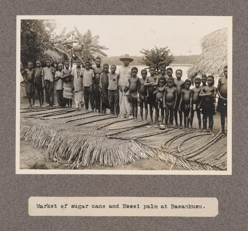 Market of sugar cane and Nsesi palm at Basankusu