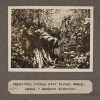 Repairing bridge over forest swamp, Kasai – Sankuru District