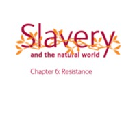 2007 NHM Slavery and the Natural World Chapter 6 Resistance.pdf