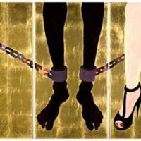 House-Slave---Field-Slave 2.jpg