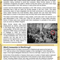 2007 Beyond the Bicentennial panel 2.pdf