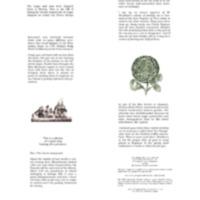 2007 Bittersweet Banner 5.pdf