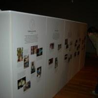 2007 Bristol Adisa Exhibition.jpg